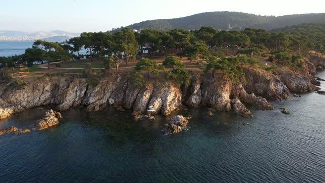 vídeos de stock, filmes e b-roll de vista aérea 4k de gaivotas e penhascos magníficos - rocha