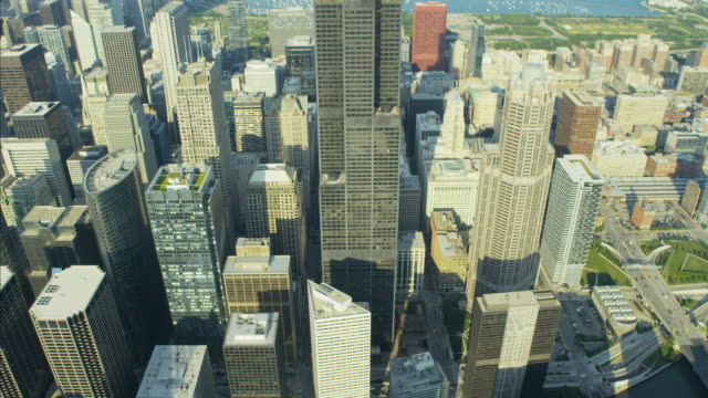 aerial view of sears tower chicago city illinois - sears tower stock-videos und b-roll-filmmaterial