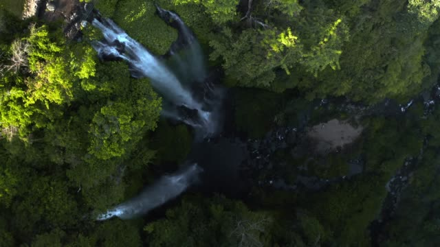 aerial view of sekumpul waterfall - beauty in nature stock videos & royalty-free footage