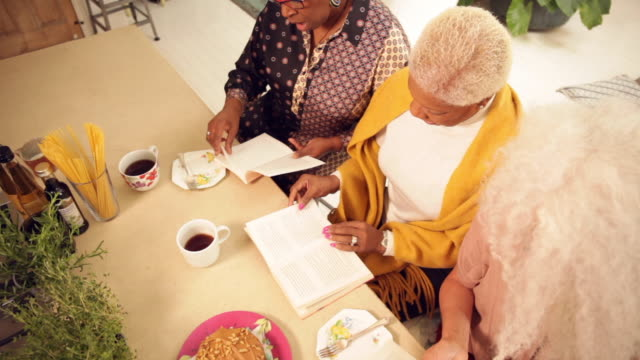 aerial view of senior women reading at a book club - book club stock videos & royalty-free footage