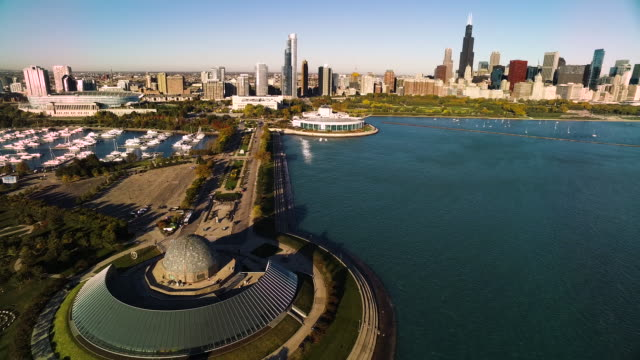 aerial view of shedd aquarium and adler planetarium on chicago harbor - willis tower stock videos and b-roll footage