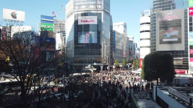 aerial view of shibuya crossing in tokyo , japan . - railway station stock videos & royalty-free footage