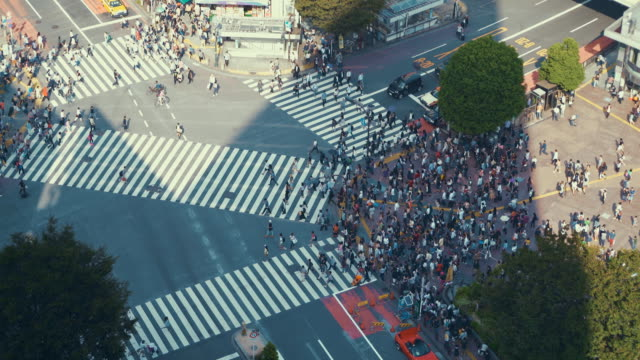 aerial view of shibuya crossing in tokyo, japan - crossroad stock videos & royalty-free footage