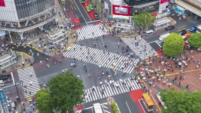 aerial view of shibuya crossing time lapse - zebra crossing stock videos & royalty-free footage