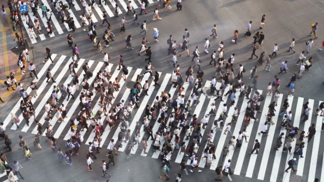 aerial view of shibuya crosswalk - 人口爆発点の映像素材/bロール