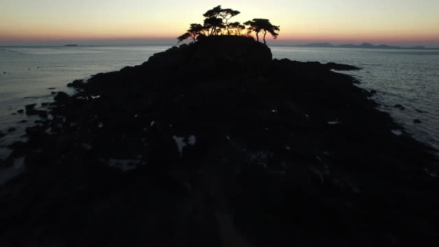 aerial view of shiluetted solseom pine tree island at sunset - pinaceae stock videos & royalty-free footage