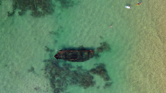 vidéos et rushes de aerial view of shipwreck in sea, tourists enjoying in ocean - arsuf, israel - faune sauvage