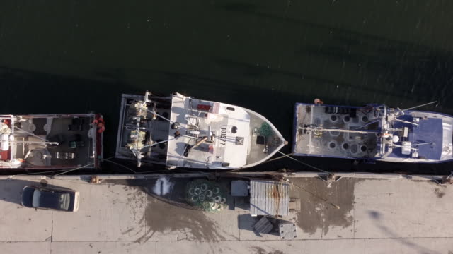 aerial view of shrimp fishing boat - fishing industry stock videos & royalty-free footage