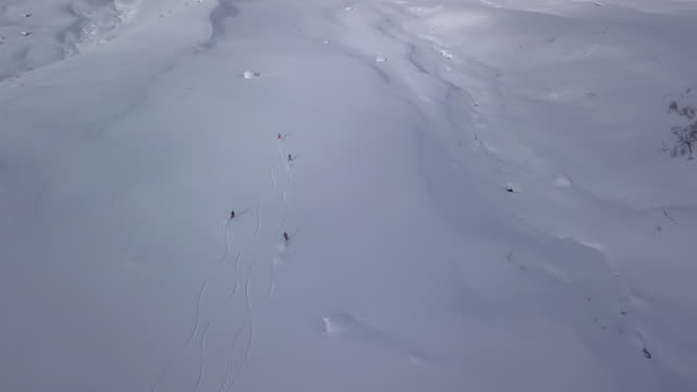 Aerial view of skiers off-piste on Georgian mountain