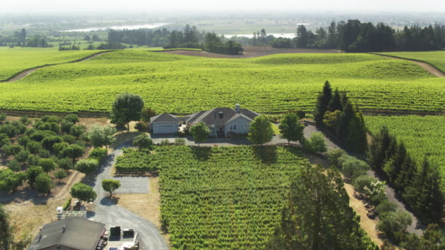 aerial view of small winery in sonoma county - baia di san francisco video stock e b–roll