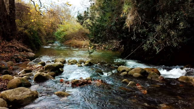 stockvideo's en b-roll-footage met aerial view of snir nature reserve (hatsbani) with water streams and lush vegetation /galilee - {{relatedsearchurl(carousel.phrase)}}