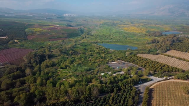 aerial view of snir nature reserve (hatsbani) with water streams and lush vegetation /galilee, israel - 自然保護区点の映像素材/bロール