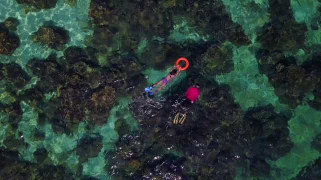 aerial view of snorkeling, long tail boat and rocky coast with crystal clear turquoise water koh kla, koh lipe, satun, thailand - barca a motore video stock e b–roll