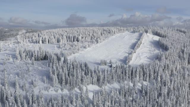 雪の空撮対象森林、冬 - バーデン・ビュルテンベルク州点の映像素材/bロール
