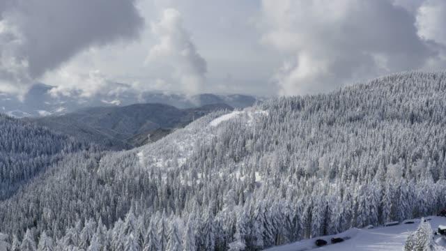 雪の空撮対象森林、冬 - 30秒以上点の映像素材/bロール