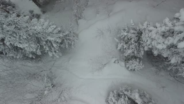 luftbild von schnee bedeckten berge - georgia stock-videos und b-roll-filmmaterial