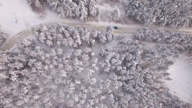vidéos et rushes de vue aérienne de 4k de forêt neige et route - neige fraîche