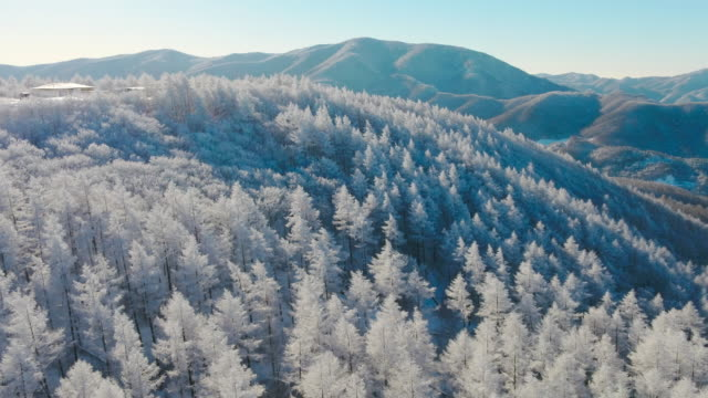 Aerial view of snow in Hambaeksan mountain (Tallest mountain in the eastern part of Gangwon-do province)