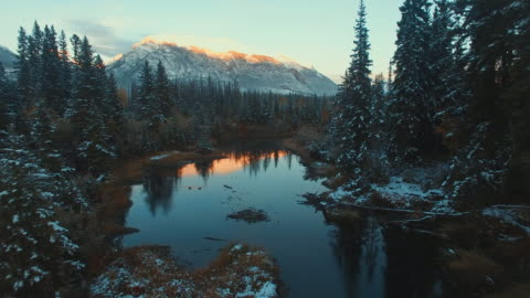aerial (drone) view of snow-covered evergreens, river, and mountains at sunset - river stock videos & royalty-free footage