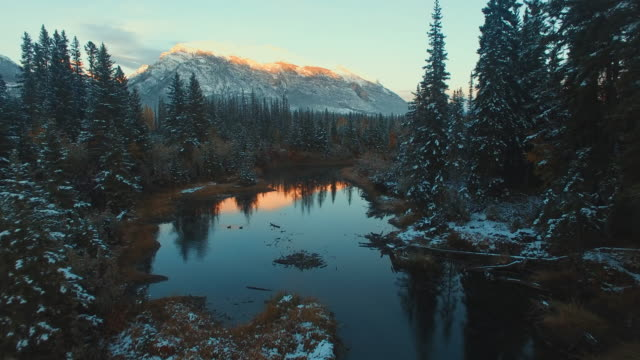 aerial (drone) view of snow-covered evergreens, river, and mountains at sunset - snowcapped mountain stock videos & royalty-free footage