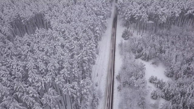 stockvideo's en b-roll-footage met aerial view of snowy forest with a road. captured from above with a drone - bos