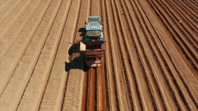 aerial view of sowing tractor at agriculture field - raw potato stock videos & royalty-free footage