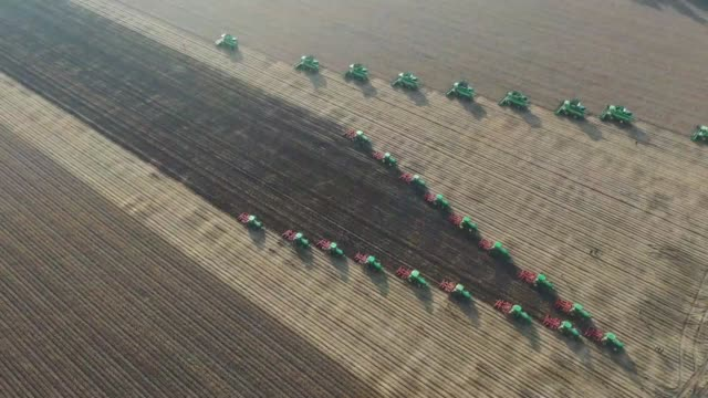 aerial view of soybeans being harvested with combine harvesters at a farm of agricultural conglomerate beidahuang group on september 30, 2020 in... - elevated view stock videos & royalty-free footage