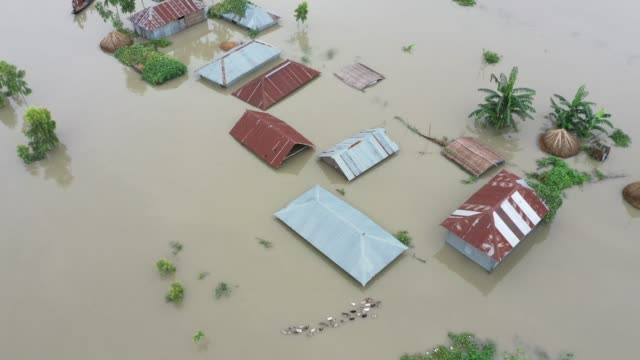 aerial view of submerged houses during flood in the northern part of bangladesh heavy monsoon rains have unleashed landslides and floods that... - bangladesch stock-videos und b-roll-filmmaterial