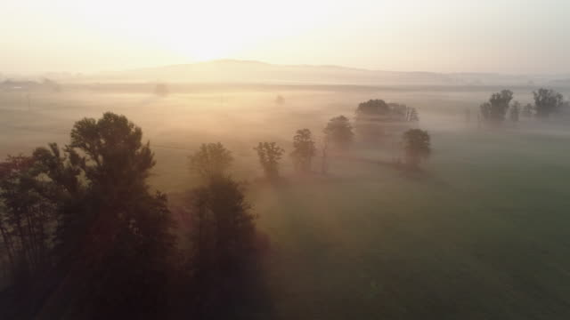 aerial view of sunrise over foggy landscape with the river altmühl near the source. franconia, bavaria, germany. - meadow stock videos & royalty-free footage