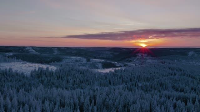冬は雪に覆われた森に沈む夕日の空撮 - 30秒以上点の映像素材/bロール