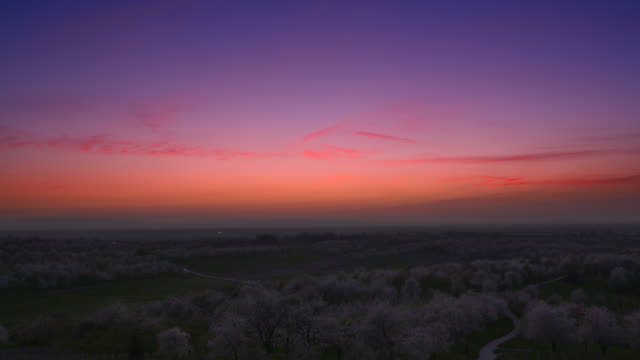 stockvideo's en b-roll-footage met aerial view of sunset with cherry tree orchards at blossom and country road. - horizon over land