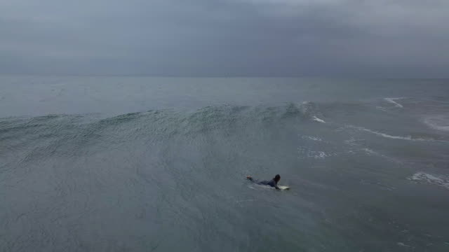 Aerial view of surfer surfing.