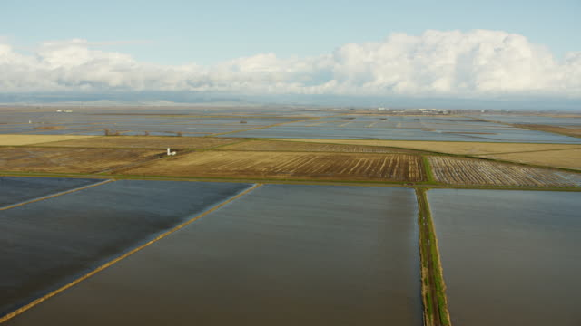 Aerial view of Sutter rice fields Northern California