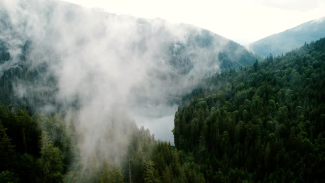vídeos de stock e filmes b-roll de aerial view of synevir lake in the  carpathian mountains in ukraine - nevoeiro