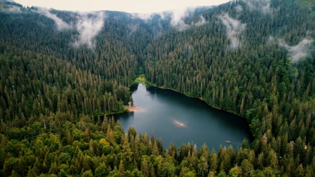 Aerial view of Synevir lake in the  Carpathian Mountains in Ukraine