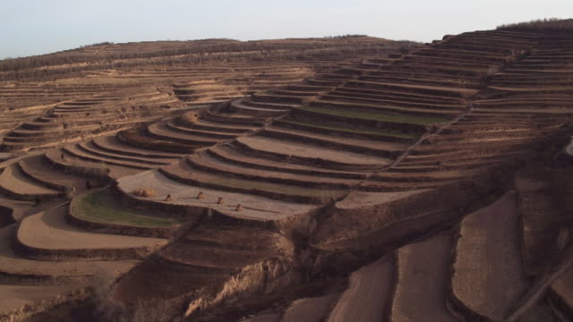 Aerial View of Terraces in China
