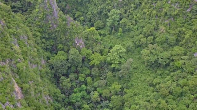 Aerial view of Tham Hup Pa Tat Cave or Amazing palm tree valley in Lan Sak, Uthai thani