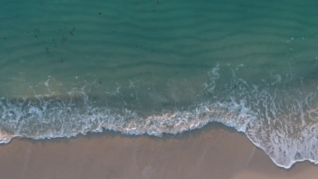 aerial view of the beach and the ocean - florida usa stock videos and b-roll footage