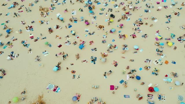 aerial view of the beach - sunbathing stock videos & royalty-free footage