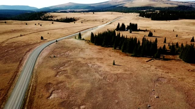 aerial view of the bighorn national forest in wyoming - canyon stock videos & royalty-free footage