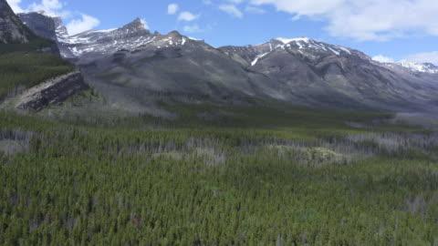 luftaufnahme der kanadischen rocky mountains, alberta, kanada - banff nationalpark stock-videos und b-roll-filmmaterial