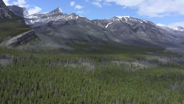 カナダ・ロッキーズの航空写真、アルバータ州、カナダ - ジャスパー国立公園点の映像素材/bロール