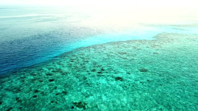 aerial view of the clean water at maldives - lagoon stock videos and b-roll footage
