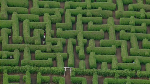 aerial view of the dole plantation maze on the hawaiian island of oahu. - maze stock videos & royalty-free footage