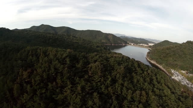 aerial view of the ecological park geumoji - north gyeongsang province stock videos & royalty-free footage