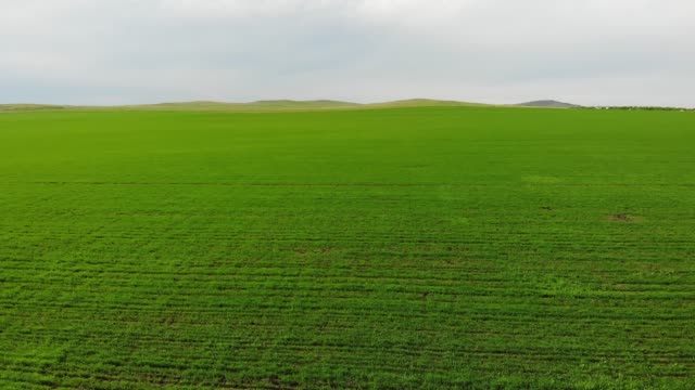 aerial view of the green fields - ground culinary stock videos & royalty-free footage