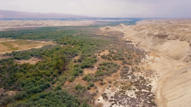 aerial view of the jordan valley - valle video stock e b–roll