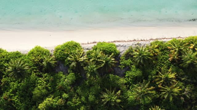 vídeos y material grabado en eventos de stock de vista aérea de las islas maldivas - fondo turquesa