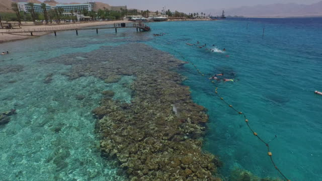aerial view of the reefs in coral beach nature reserve, eilat, israel. - red sea video stock e b–roll
