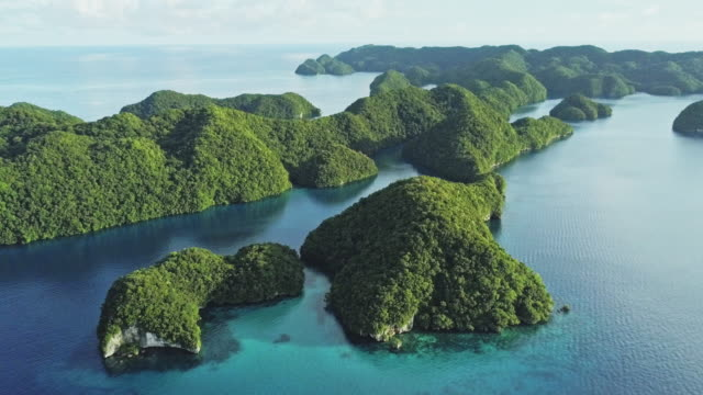 ws aerial view of the rock islands / koror, palau - wirbelloses tier stock-videos und b-roll-filmmaterial